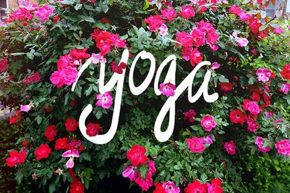 Spring Yoga Retreat With Georgios