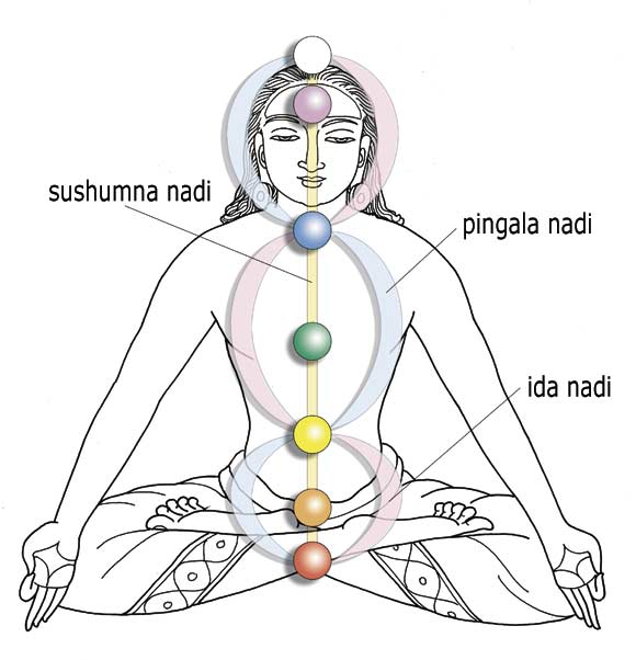 Prana and the Chakras